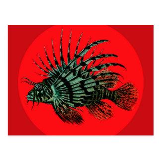 Carte postale de poissons de lion