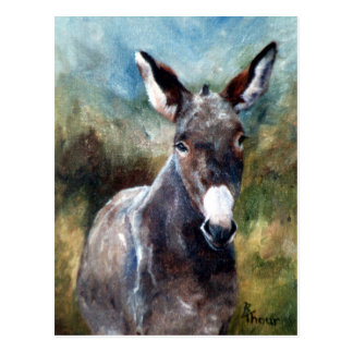 Carte postale de portrait d'âne