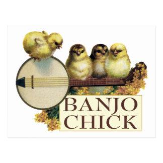 Carte postale de poussin de banjo