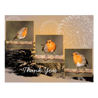 Carte postale de Robin Tryptych de Merci