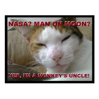 Carte postale de singe de Tiki - la terre plate