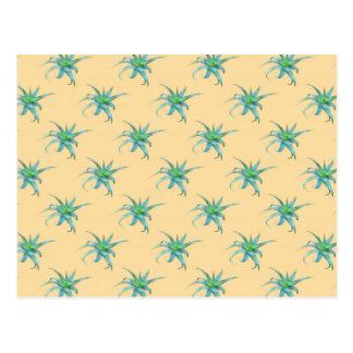 Carte postale de Succulent d'Arborescens d'aloès