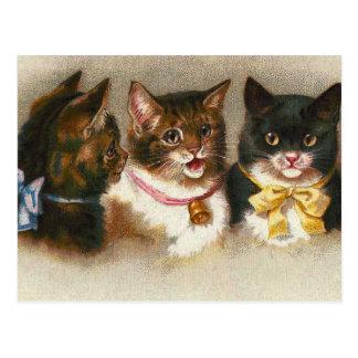 """Carte postale de """"trois chats vintages"""""""