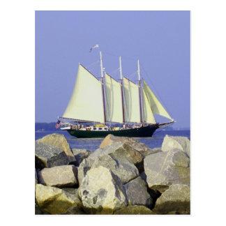Carte postale de voilier de Jamestown