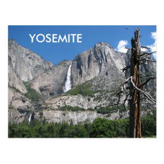 Carte postale de Yosemite !
