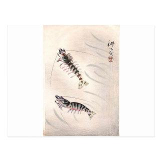 Carte Postale Deux crevettes roses par Yamamura Toyonari