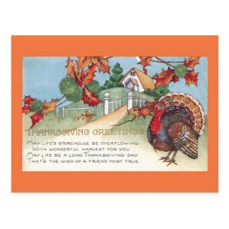 Carte Postale dinde vintage du thanksgiving 1927