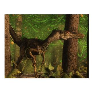 Carte Postale Dinosaure de Velociraptor dans la forêt