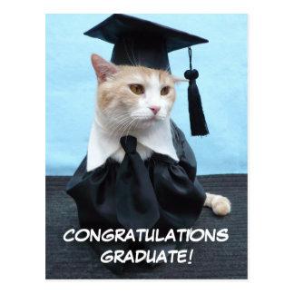 Carte Postale Diplômé de félicitations !