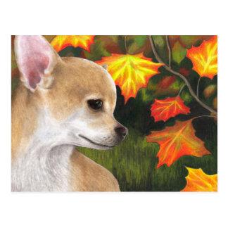 Carte Postale Dog 94 Chihuahua