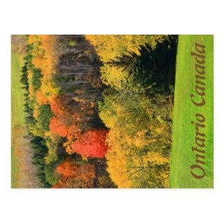 Carte postale d'Ontario Canada