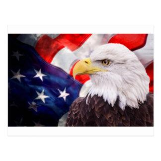 Carte Postale Drapeau américain et aigle 2