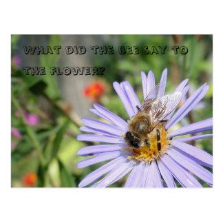 Carte postale drôle d'abeille