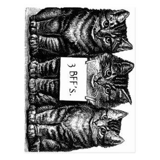 Carte postale du chaton de trois BFF