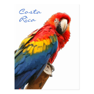 Carte postale du Costa Rica d'ara d'écarlate