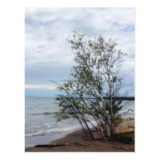 Carte postale du lac Supérieur