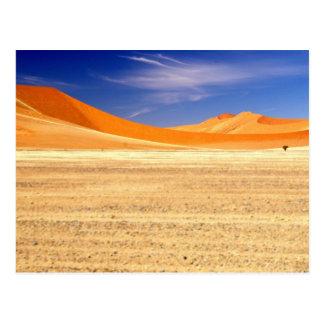 Carte Postale Dunes de sable de la Namibie