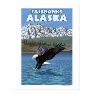 Carte Postale Eagle chauve plongeant - Fairbanks, Alaska