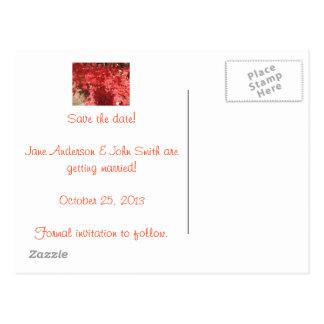 Carte Postale Économies de chute la date