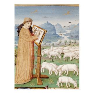 Carte Postale Écriture de Virgil dans un domaine des moutons et