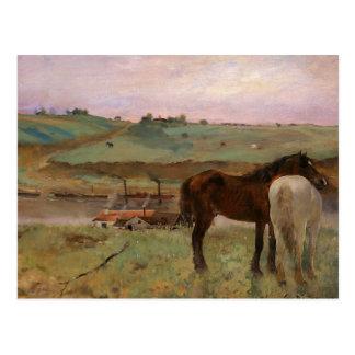Carte Postale Edgar Degas - chevaux dans un pré
