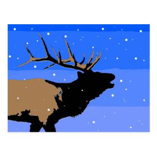 Carte Postale Élans de Bugling en hiver