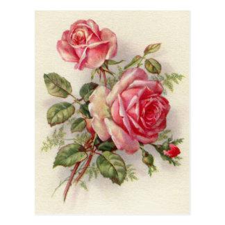 Carte postale élégante de rose floral vintage