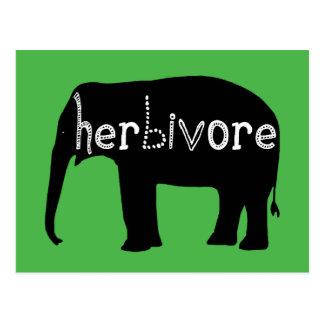 Carte Postale Éléphant - herbivore