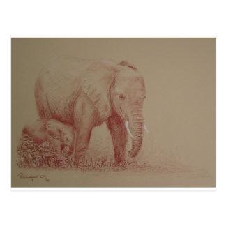 Carte Postale Éléphants