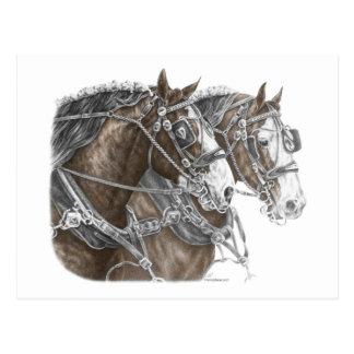 Carte Postale Équipe de cheval de trait de Clydesdale