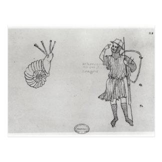 Carte Postale Escargot Fol.2 et soldat hongrois