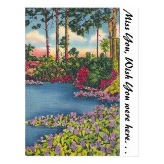 Carte Postale Étang de Lilly, la Floride
