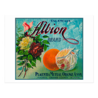 Carte Postale Étiquette de caisse d'agrume de marque d'Albion