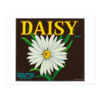 Carte Postale Étiquette de caisse d'agrume de marque de