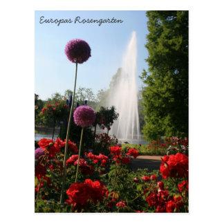 Carte Postale Europas Rosengarten
