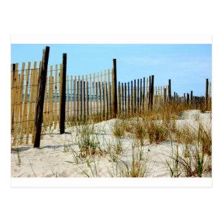 Carte Postale Évasion aux dunes
