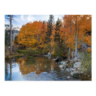 Carte Postale Évêque Creek. Couleur de débouché et de chute