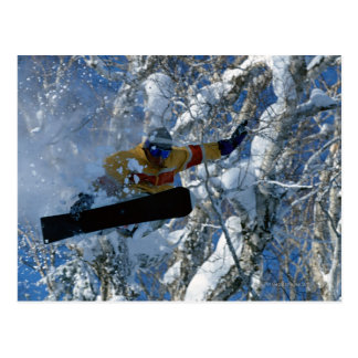 Carte Postale Faire du surf des neiges 3