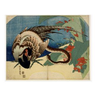 Carte Postale Faisan et le serpent