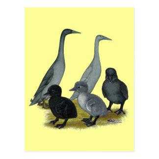 Carte Postale Famille de canard de coureur bleu