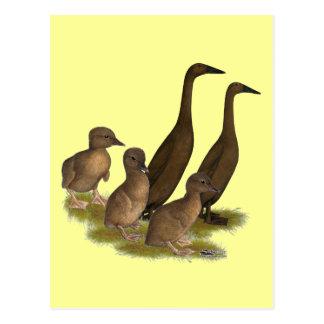 Carte Postale Famille de canard de coureur de chocolat