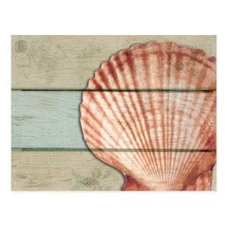 Carte Postale Feston Shell
