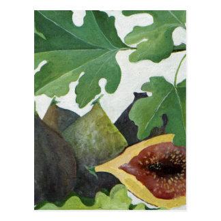 Carte Postale Figues 2013