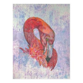 Carte Postale Flamant timide