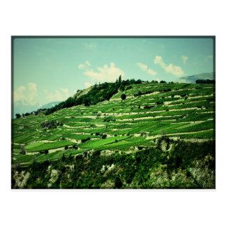 Carte Postale Flancs de coteau suisses