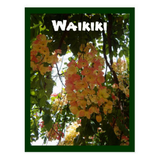 Carte Postale Fleur de Waikiki