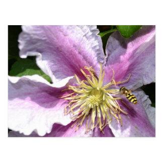 Carte Postale Fleur exotique avec l'abeille