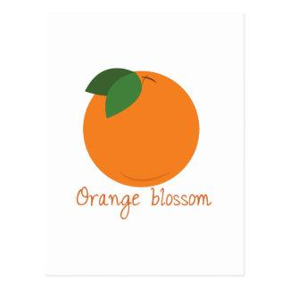 Carte Postale Fleur orange