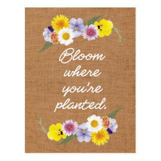 Carte Postale Fleur où vous êtes plantés (la toile de jute)