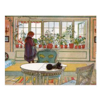 Carte Postale Fleurs dans la boîte de fenêtre - Blomsterforstet